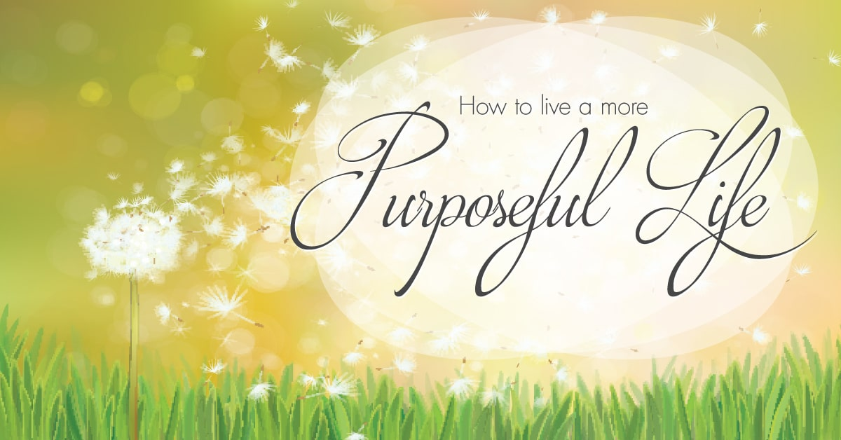 purposeful life Purpose in life is regarded as one of six core dimensions of psychological well-being, along with autonomy, environmental mastery, personal growth, positive relationships, and self-acceptance people are said to have purpose in life when they can describe specific goals and objectives that give them a sense of directedness and meaning.